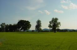 Chattins Run – Village Parcel  – Lot #4, Delaplane, VA